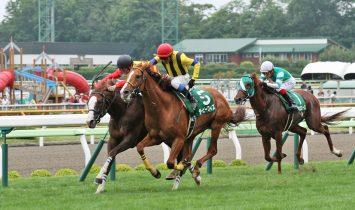 第52回 函館記念 マヨトラ競馬学園競馬アイドル予想