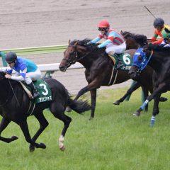 第65回 ラジオNIKKEI賞 マヨトラ競馬学園競馬アイドル予想