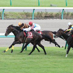第70回朝日杯セントライト記念 マヨトラ競馬学園競馬アイドル予想