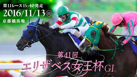 第154回 天皇賞(秋) 2016 G1マ...