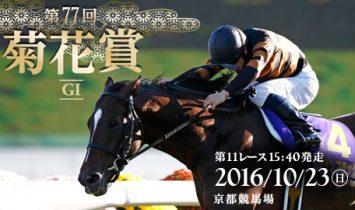 第77回 菊花賞 2016 G1マヨトラ競馬学園競馬アイドル予想