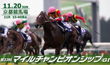 第33回 マイルチャンピオンシップ 2016 マヨトラ競馬アイドル予想