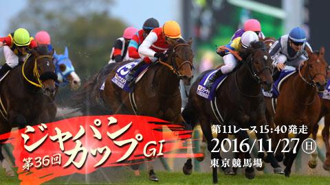 第36回 ジャパンカップ 2016 マヨトラ競馬アイドル予想