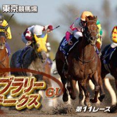 第34回 フェブラリーステークス 2017 G1 マヨトラ競馬アイドル予想