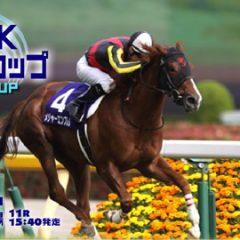 第22回 NHKマイルカップ 2017 G1 マヨトラ競馬アイドル予想