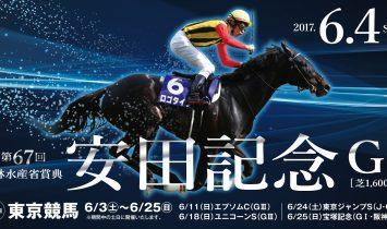 第67回 安田記念 2017 G1 マヨトラ競馬アイドル予想