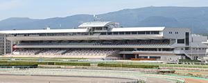 函館競馬場の天候と馬場状態