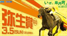 2017年2月中山競馬場イベント情報