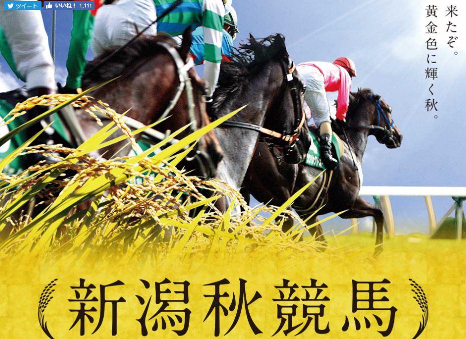 2017年10月新潟競馬場イベント情報詳細