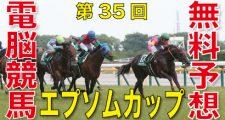 第35回-エプソムカップ(GⅢ)-電脳競馬新聞無料予想