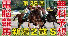 2018年8月26日-第38回-新潟2歳ステークス(GⅢ)