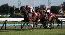 第72回 朝日杯セントライト記念(GⅡ)