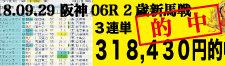 2018年9月29日-阪神06R-2歳・新馬-電脳競馬新聞3連単318,430円的中!