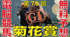 10月21日-第79回-菊花賞(GⅠ)電脳競馬新聞