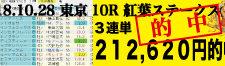 2018年10月28日-東京10R-紅葉ステークス-電脳競馬新聞3連単212,620円的中!バナー
