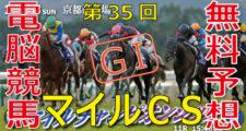 第35回-マイルチャンピオンシップ(GⅠ)-電脳競馬新聞バナー