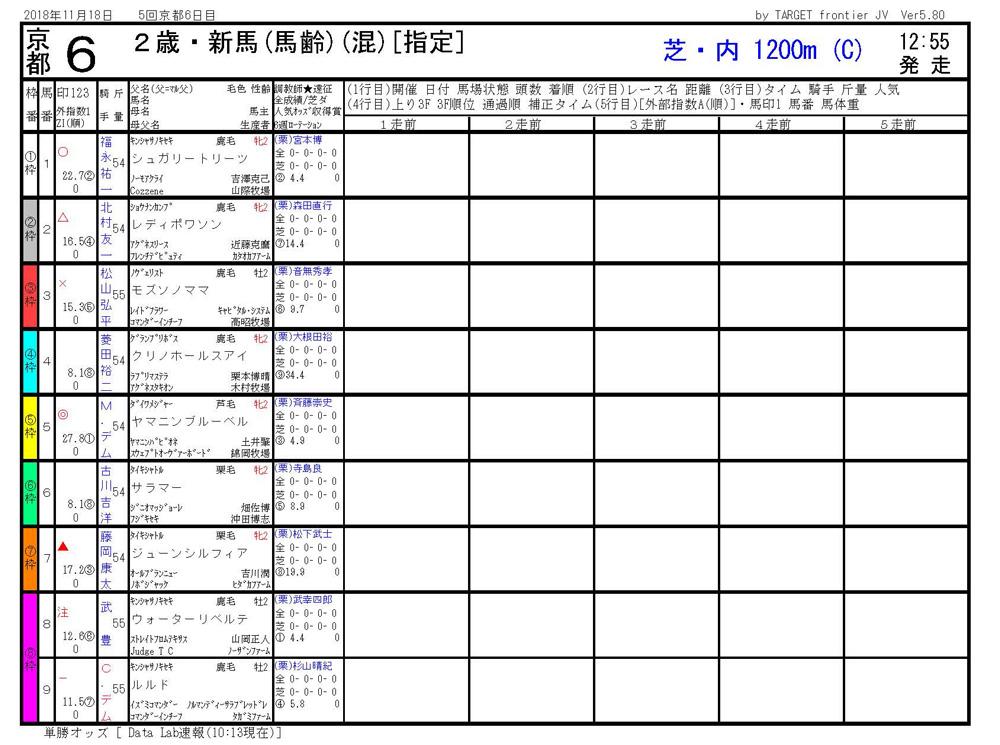 2018年11月18日開催 京都06R 2歳・新馬戦 電脳競馬新聞3連単166,570円馬券的中