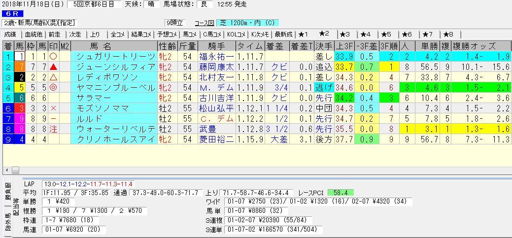 2018年11月18日開催 京都06R 2歳・新馬戦 電脳競馬新聞3連単3連単166,570円馬券的中!結果