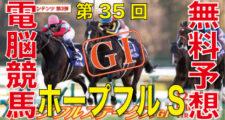 第35回-ホープフルステークス(GⅠ)バナー