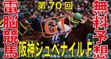 第70回-阪神ジュベナイルフィリーズ(GⅠ)バナー画像
