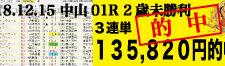 2018年12月15日-中山01R-2歳・未勝利-電脳競馬新聞3連単135,820円的中!!バナー