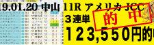 2019年01月20日-中山11R-アメリカJCC-電脳競馬新聞3連単123,550円的中!!バナー