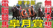 04月14日-第79回-皐月賞(GⅠ)電脳競馬新聞無料予想バナー