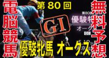 第80回-オークス-優駿牝馬(GⅠ)バナー