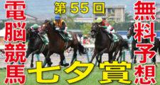 2019年7月7日-第55回-七夕賞(GⅢ)