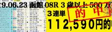 2019年06月23日-函館08R-3歳500万下-電脳競馬新聞3連単112,590円的中!!バナー