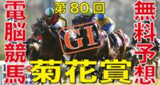第80回-菊花賞(GⅠ)-電脳競馬新聞無料予想