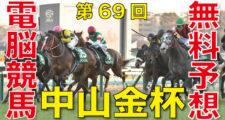 第69回-中山金杯(GⅢ)バナー