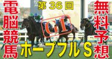 第36回-ホープフルステークス(GⅠ)-電脳競馬新聞無料予想