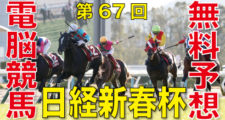 第67回-日経新春杯(GⅡ)バナー