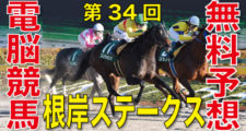 02月02日 第34回 根岸ステークス(GⅢ)電脳競馬新聞無料予想