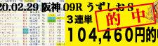 2020年02月29日-阪神09R-うずしおステークス-電脳競馬新聞3連単104,460円的中!!バナー