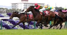 第54回 フィリーズレビュー(GⅡ),阪神競馬場,電脳競馬新聞、競馬新聞,競馬予想,メインレース