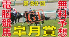 04月19日 第80回 皐月賞(GⅠ)電脳競馬新聞無料予想
