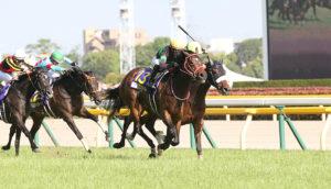 05月24日 第81回 優駿牝馬オークス(GⅠ)電脳競馬新聞無料予想情報