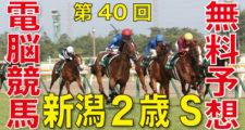 08月30日 第40回 新潟2歳ステークス(GⅢ)電脳競馬新聞無料予想バナー