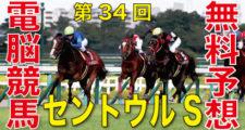 09月13日-第34回-セントウルステークス(GⅡ)電脳競馬新聞無料予想