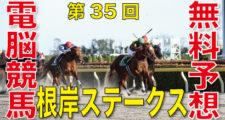 01月31日 第35回 根岸ステークス(GⅢ)電脳競馬新聞無料予想