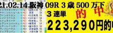 2021年02月14日-阪神09R-3歳500万下-電脳競馬新聞3連単223,290円的中!!バナー