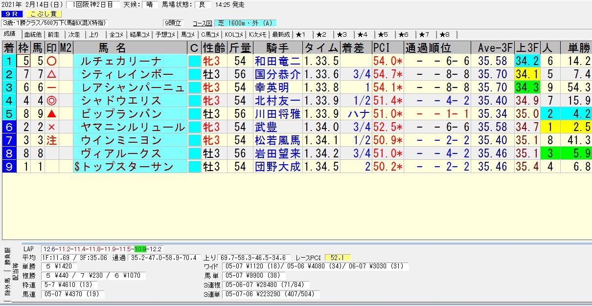 2021年02月14日開催 阪神09R 3歳500万下 電脳競馬新聞 3連単223,290円馬券的中!結果