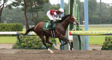 08月08日 第13回 レパードステークス(GⅢ)電脳競馬新聞予想情報